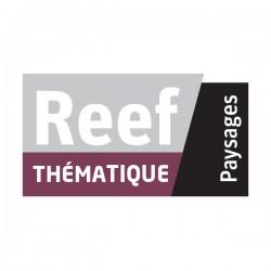Reef Thématique amenagements paysagers