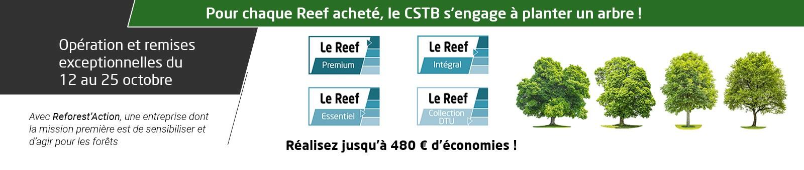 Promotion Reef Octobre 2020